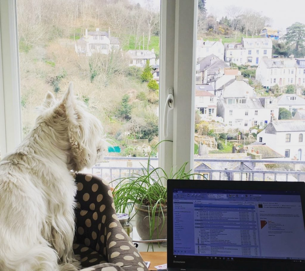 Eddie staring out of window to Looe