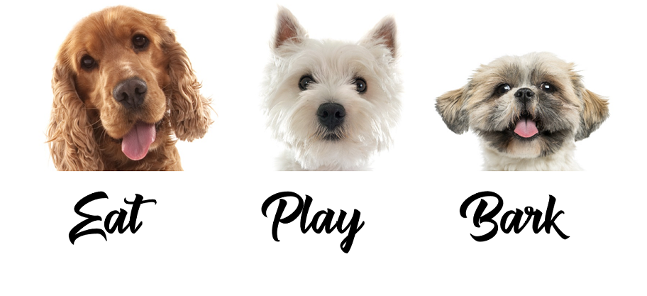 Eat Play Bark Logo