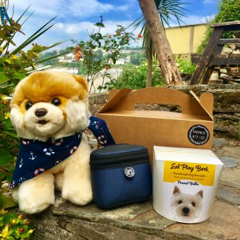 Cornish Dog Gift Box with biscuits