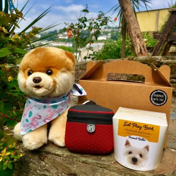 Cornish Girl Dog Gift Box with biscuits